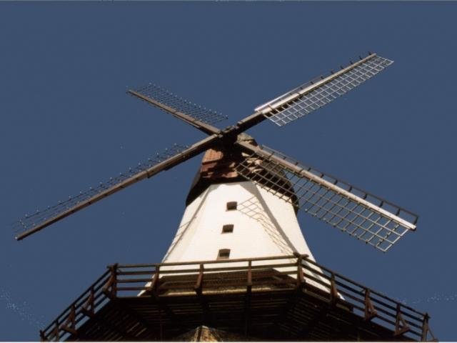 Kappeln an der Schlei - Mühle Amanda