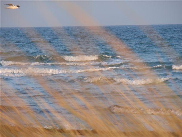 Wellen auf der Ostsee