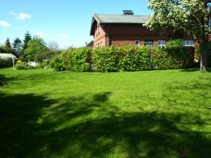 Ferienhaus-Ostsee-Schlei-Garten
